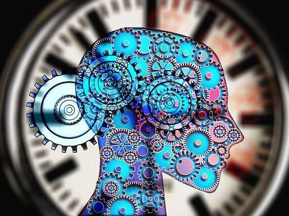 Les différentes branches de la psychologie